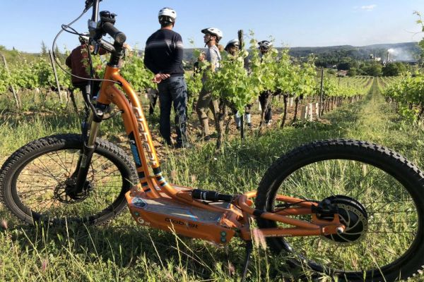 trottinette à travers les vignes